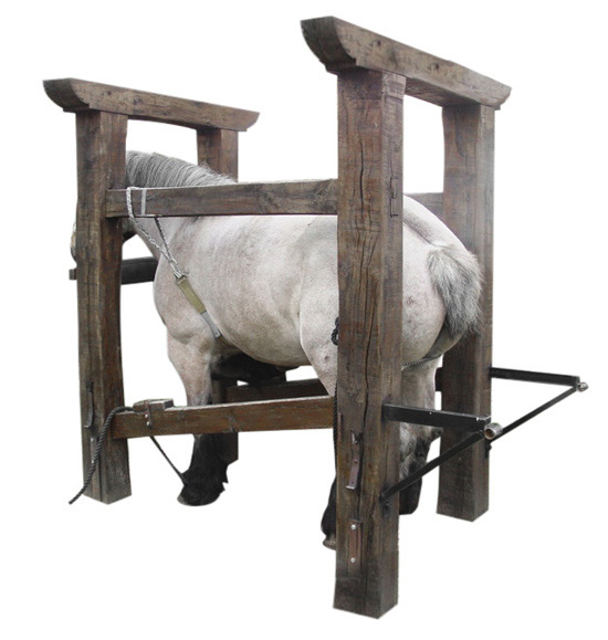 Artitec 387.431 - Shoeing stock , horse and farrier