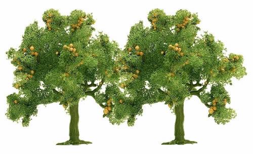 Busch 6628 - 2 apple trees