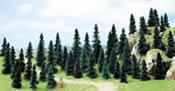 50 pine trees