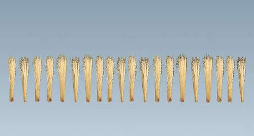 Faller 170716 - Reeds