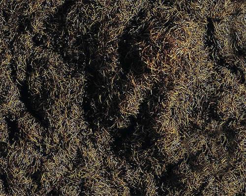 Faller 170727 - Grass fibres, dark brown, 35 g