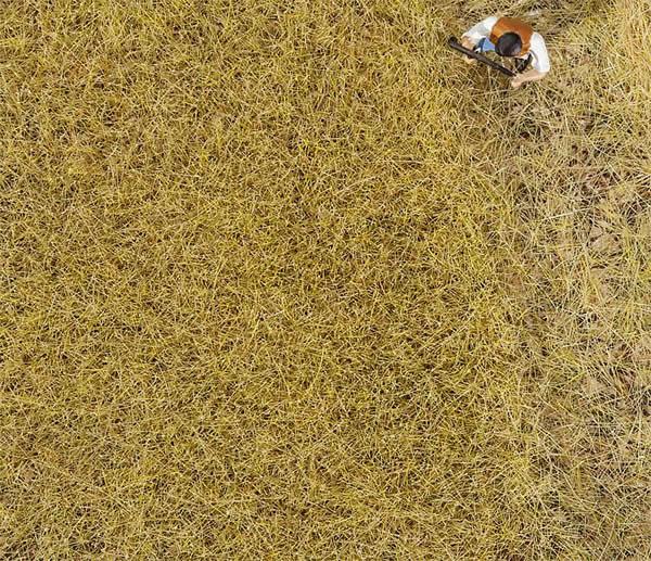 Faller 170775 - PREMIUM Ground cover fibres, Hay, 6 mm, 30 g