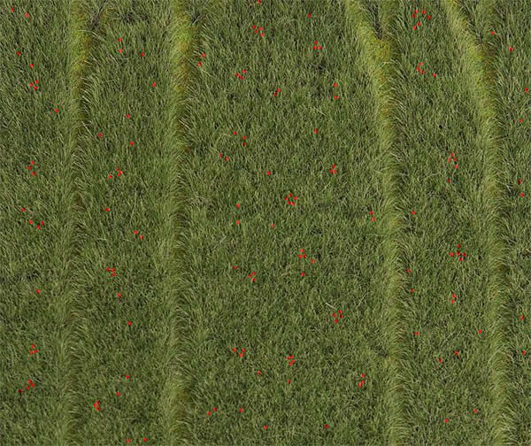 Faller 180458 - PREMIUM Landscape segment, Grain-field with poppies