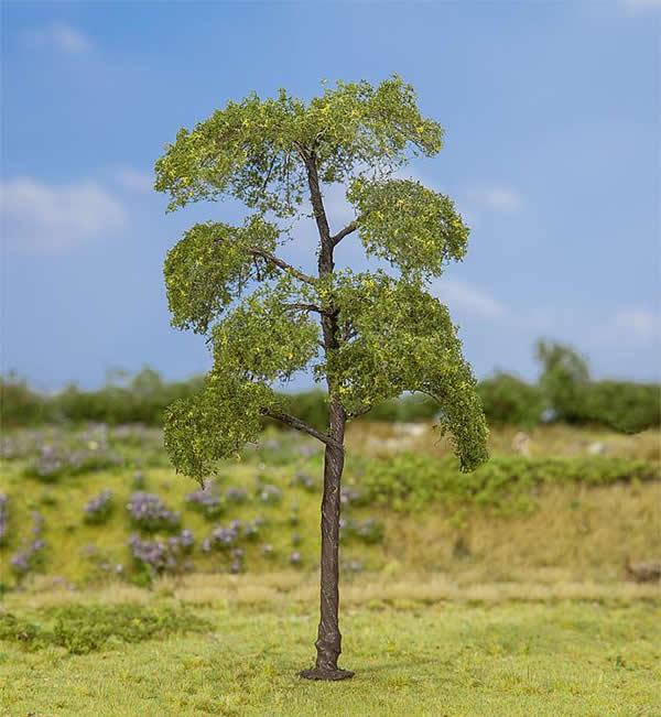 Faller 181177 - 1 PREMIUM Black poplar
