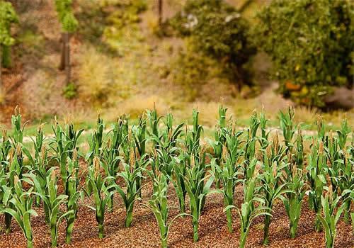 Faller 181250 - 36 Maize plants