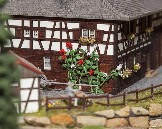 Faller 181268 - 6 Climbing roses