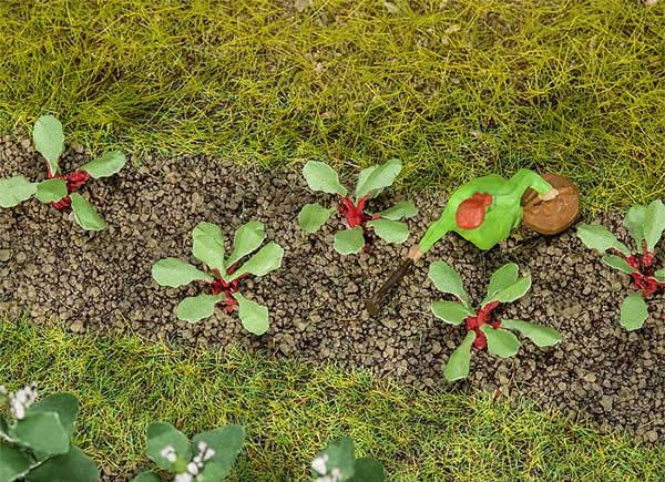 Faller 181273 - 28 Rhubarb plants