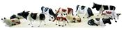 12 Cows
