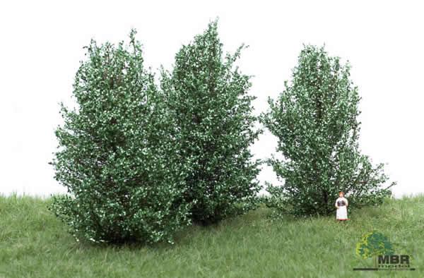 MBR 50-4003 - Large BushWhite Green