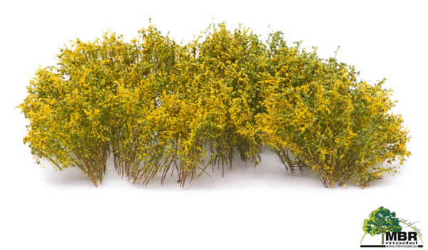 MBR 50-5003 - Shrub Blooming Yellow Flowers