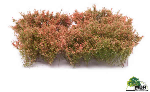 MBR 50-5006 - Shrub Blooming Pink Flowers