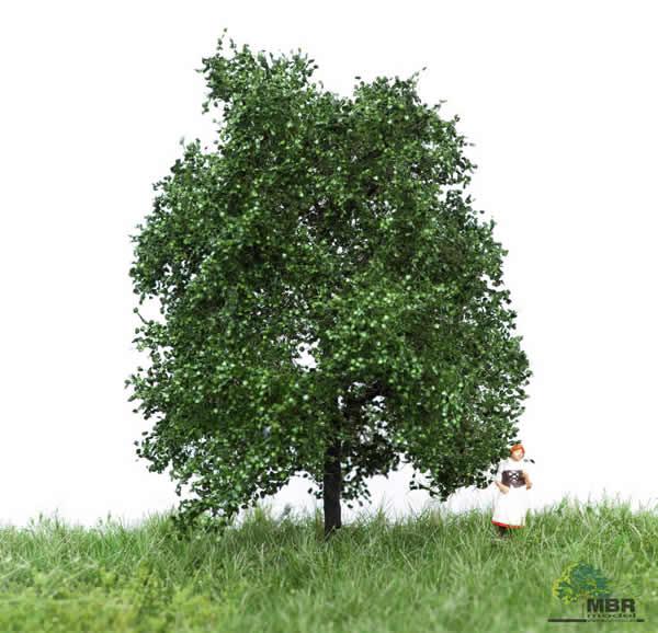 MBR 51-2103 - Summer Oak Tree