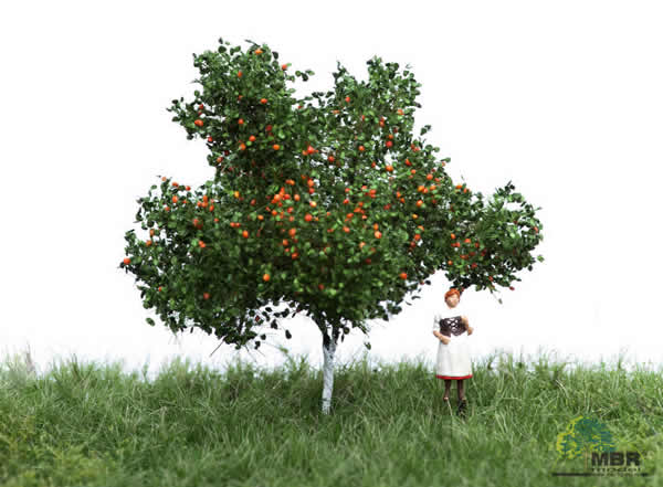 MBR 51-2304 - Summer Apple Tree with Apples