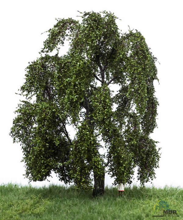 MBR 51-2309 - Summer Weeping Willow Tree