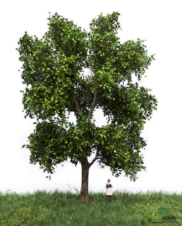 MBR 51-2311 - Summer Plantae Tree