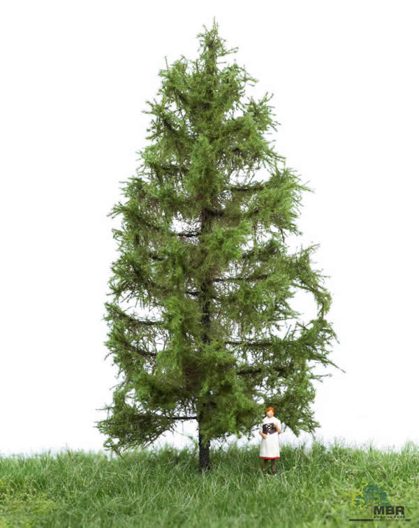 MBR 51-4203 - Summer Larch Tree