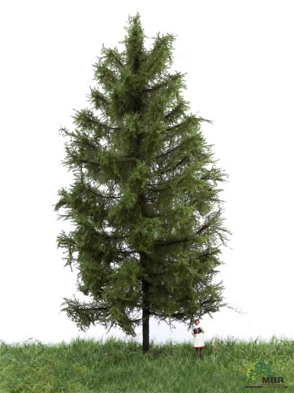 MBR 51-4303 - Summer Larch Tree