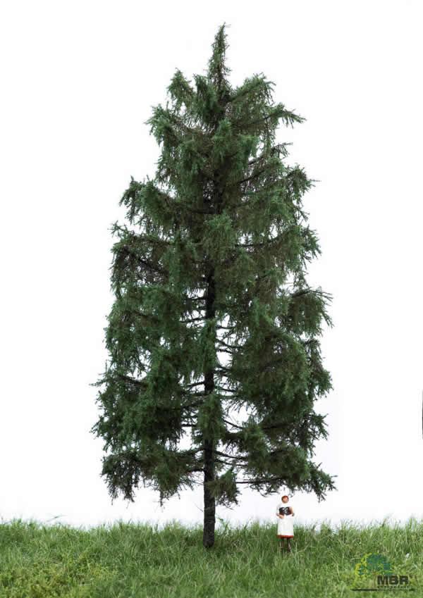 MBR 51-4306 - Summer Spruce Tree