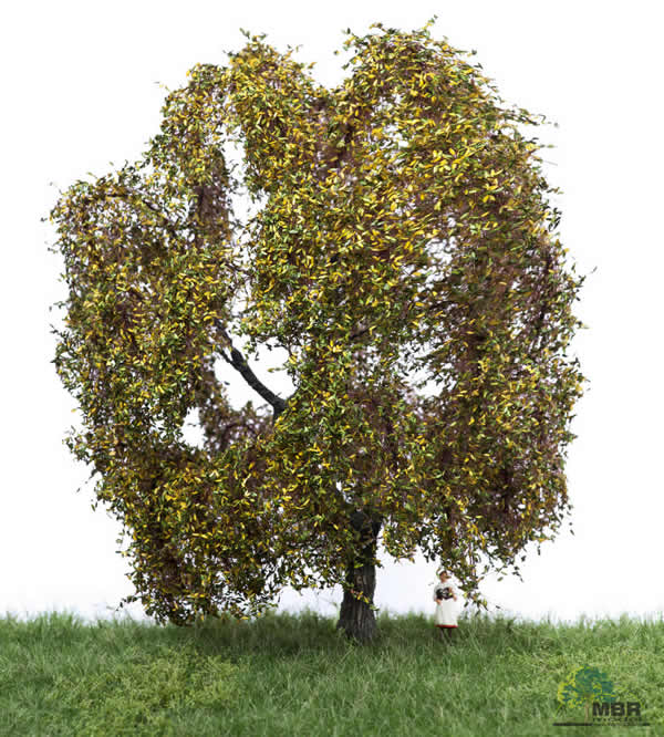 MBR 52-2309 - Authum Weeping Willow Tree