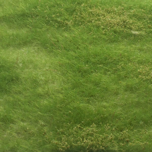 MBR 55-0007 - Static Scenic Grass Mat 4-8mm