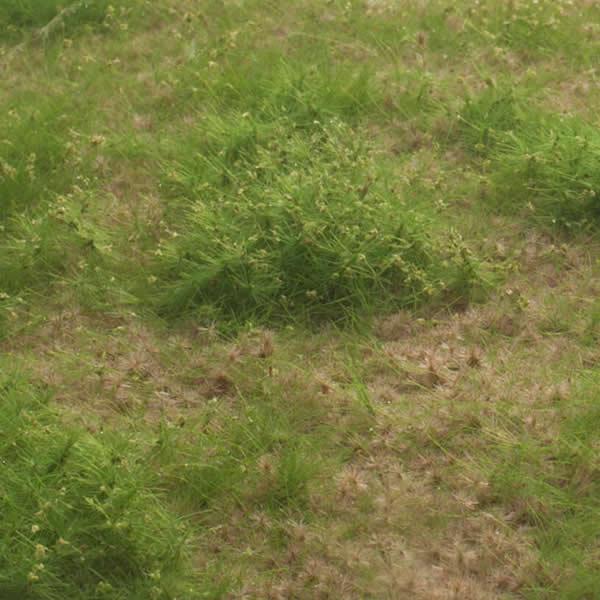 MBR 55-1018 - Static Scenic Grass Mat 8-18mm