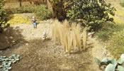 Reed 40 mm Natural