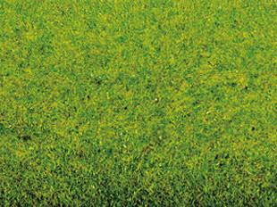 Noch 00130 - Grass Mat Spring Meadow, 100 x 75 cm