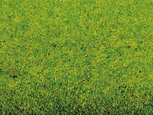 Noch 00130 - Grass Mat Spring Meadow, 100 x 75 cm