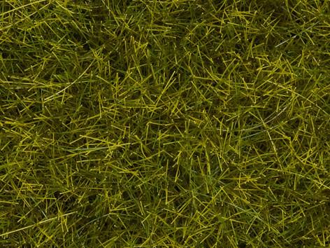 Noch 00402 - Meadow Mat, Meadow, 6 mm