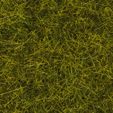 Noch 00412 - Natural Grass Mat Meadow