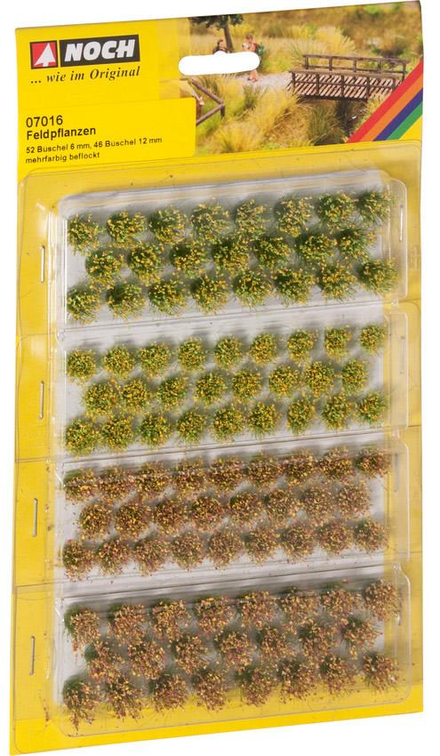 Noch 07016 - Grass Tufts Field Plants