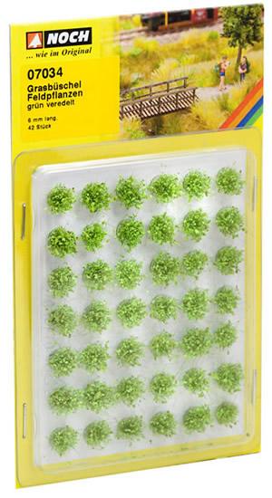 Noch 07034 - Grass Tufts Field Plants