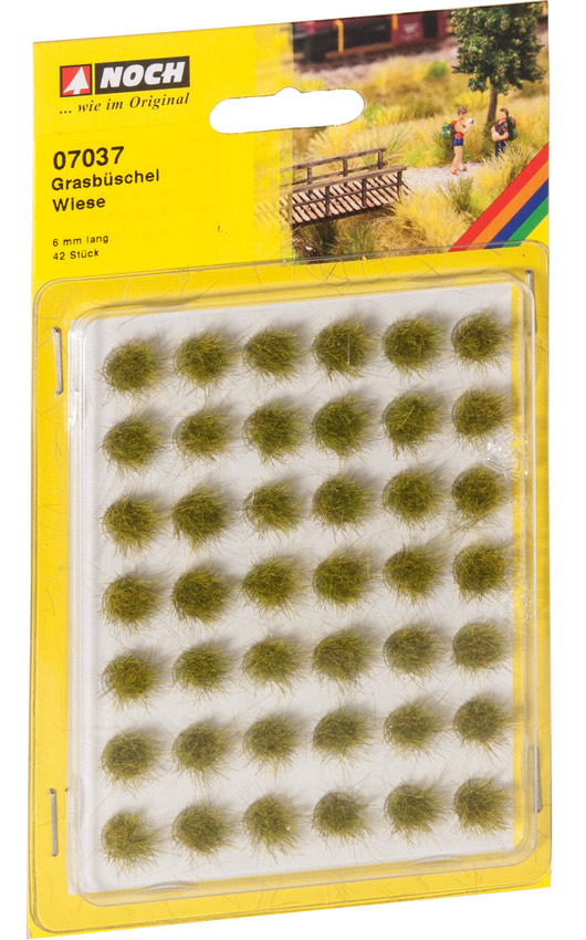 Noch 07037 - Grass Tufts Meadow
