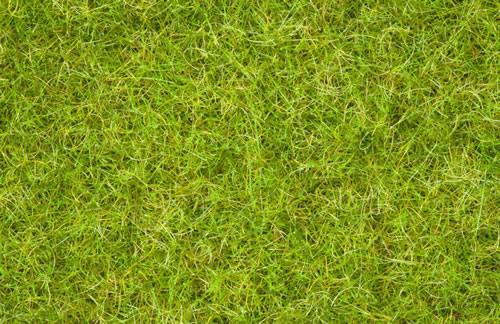 Noch 07076 - Master Grass Blend Summer Meadow, 2,5 - 6 mm