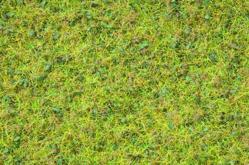 Noch 07077 - Master Grass Blend Summer Meadow, 2,5 - 6 mm