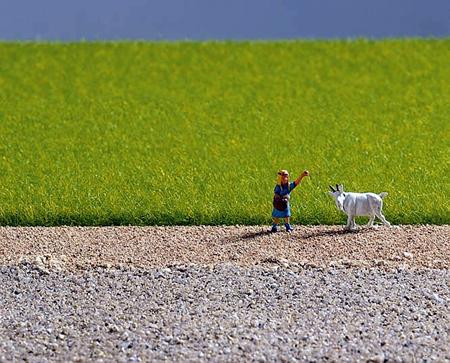 Noch 07082 - Field Grass, light green