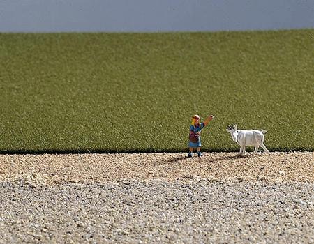 Noch 07084 - Field Grass, medium green