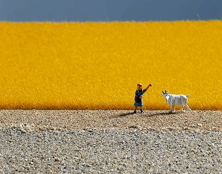 Noch 07088 - Field Grass golden-yellow