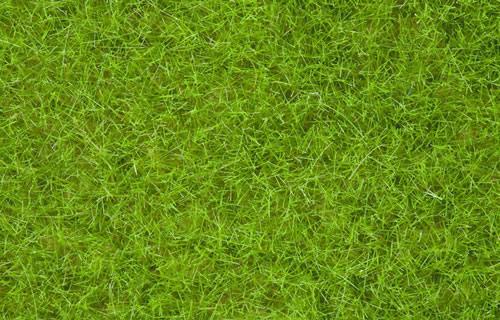Noch 07097 - Wild Grass XL, light green, 12 mm