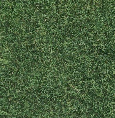 Noch 07102 - Wild Grass, light green, 6 mm