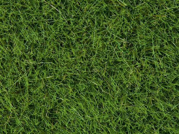 Noch 07104 - Wild Grass, bright green, 6 mm