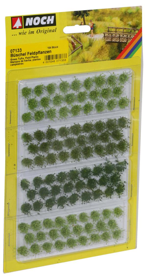 Noch 07133 - Grass Tufts Field Plants