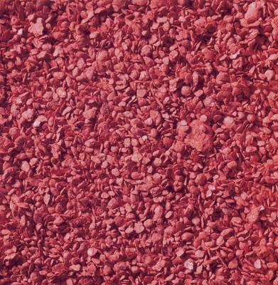 Noch 07149 - Leaves Red