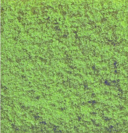 Noch 07240 - Flock, olive