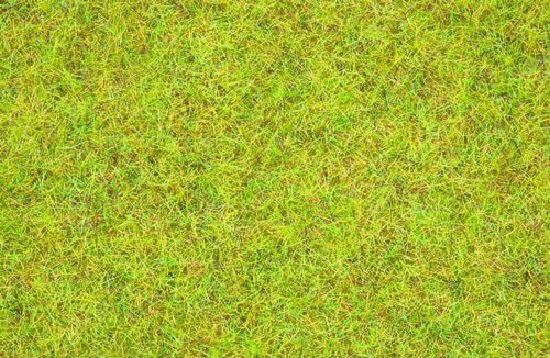Noch 08151 - Scatter Grass Summer Meadow, 2,5 mm