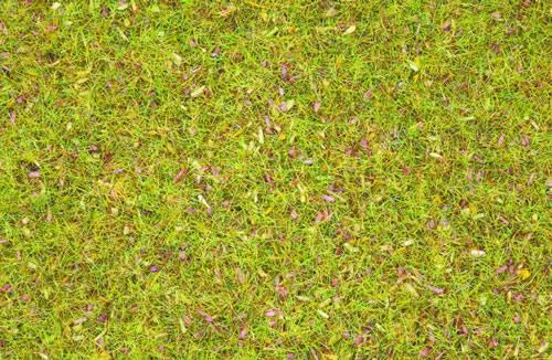 Noch 08155 - Scatter Grass Flowers, 2,5 mm