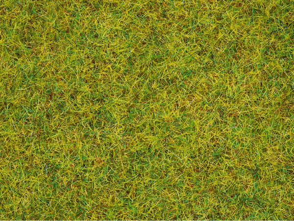 Noch 08310 - Scatter Grass Summer Meadow, 2,5 mm
