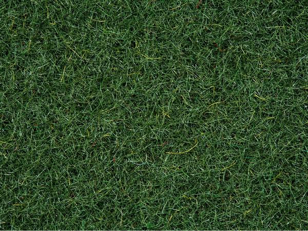 Noch 08320 - Static grass dark green