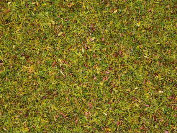 Noch 08330 - Scatter Grass Flower Meadow, 2,5 mm