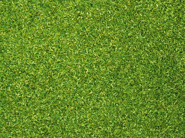 Noch 08371 - Scatter Material light green